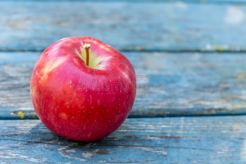 Honeycrisp Apple fotografie stock libere da diritti
