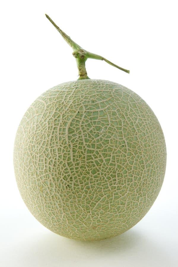Honeydew melon. Fresh and Juicy Honeydew Melon stock image