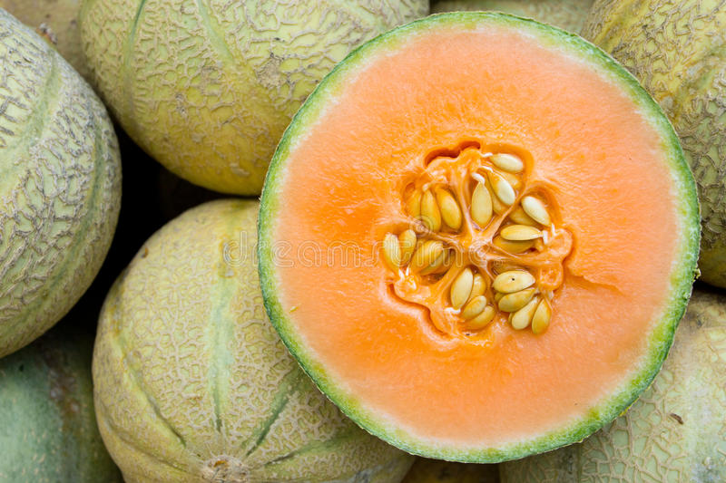 Honeydew melons. Seen on a weekly fruit market royalty free stock image