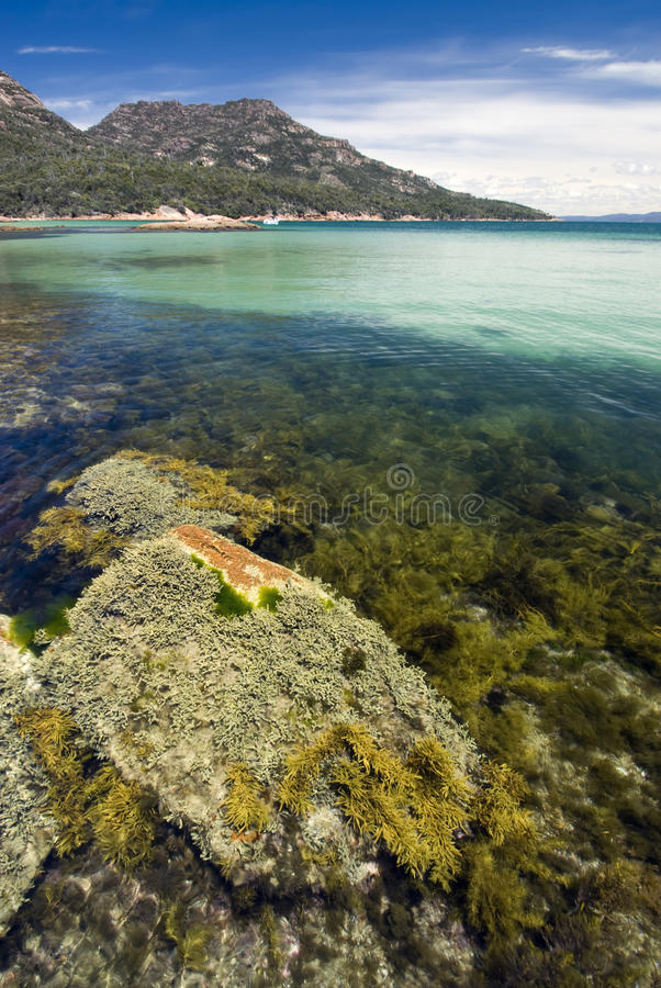 Download Honeymoon Bay, Freycinet National Park, Tasmania, Australia Stock Image - Image: 38083155