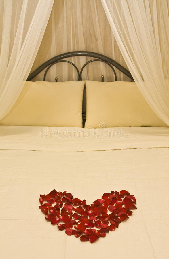 Download Honeymoon bed stock photo. Image of valentine, married - 17790242