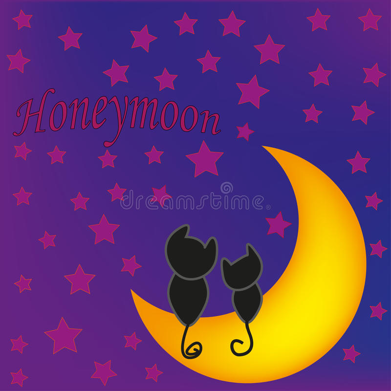 Honeymoon cats in front of moon royalty free stock photo
