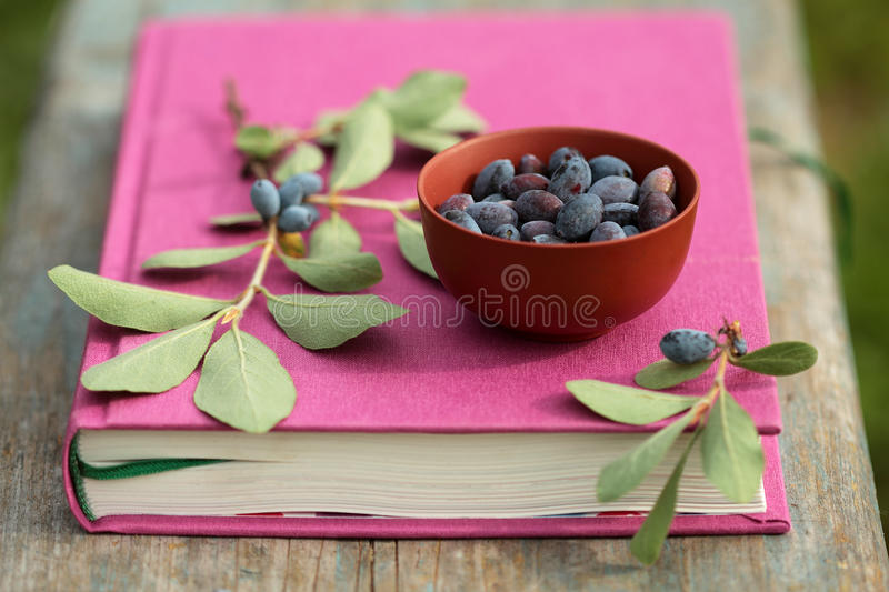 Honeysuckle berries in bowl on the fuchsia book on wooden surface royalty free stock image