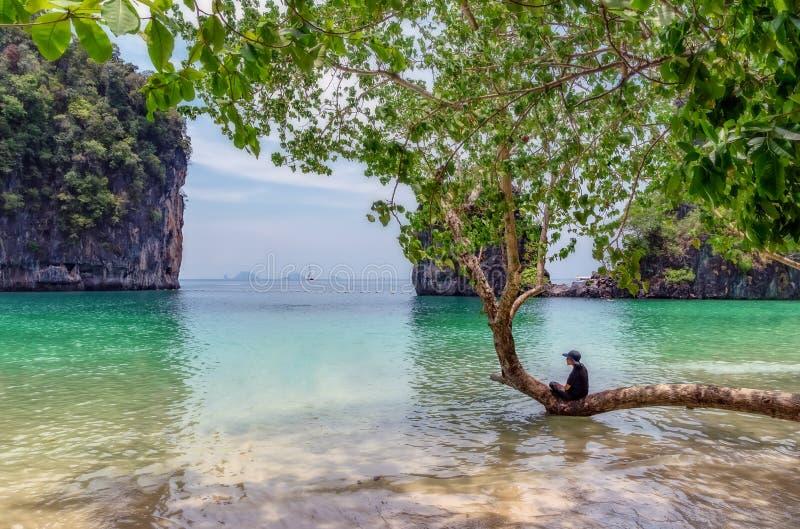 Hong Island, a paradise island in Thailand royalty free stock photo