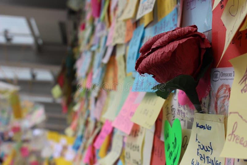 Hong Kong, Centraal, Paraplurevolutie stock afbeeldingen