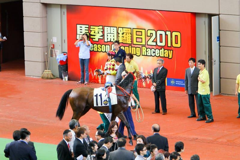 HONG KONG, CHINA - der Sha Tin Racecourse stockfotografie