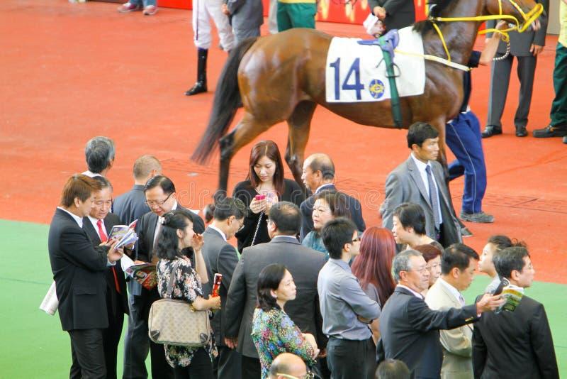 HONG KONG, CHINA - der Sha Tin Racecourse stockfotos