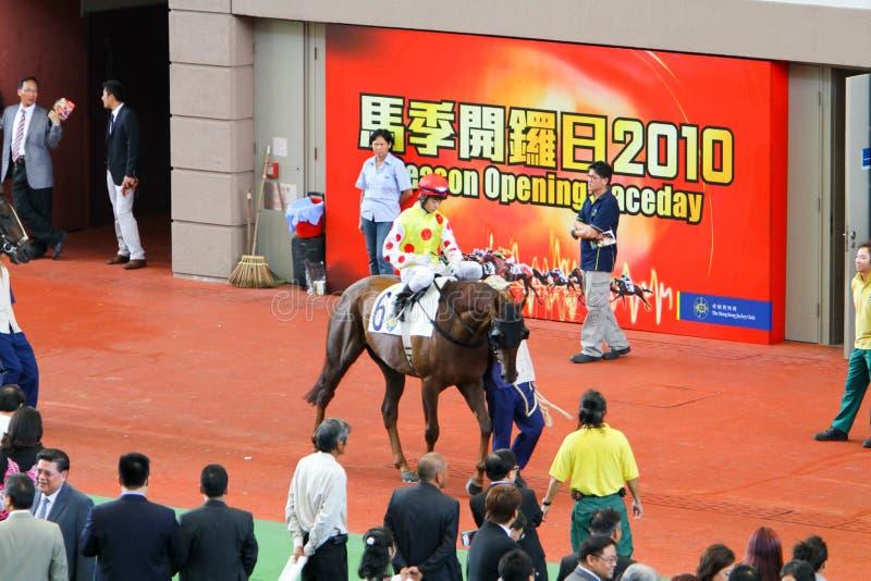 HONG KONG, CHINA - der Sha Tin Racecourse stockfoto