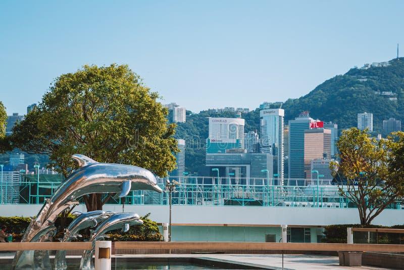 Hong Kong Dolphin pela costa de mar foto de stock royalty free