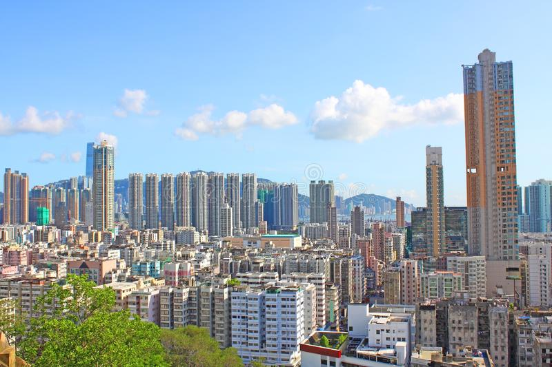Download Hong Kong Downtown With Crowded Buildings Stock Photo - Image of life, skyscraper: 20251300