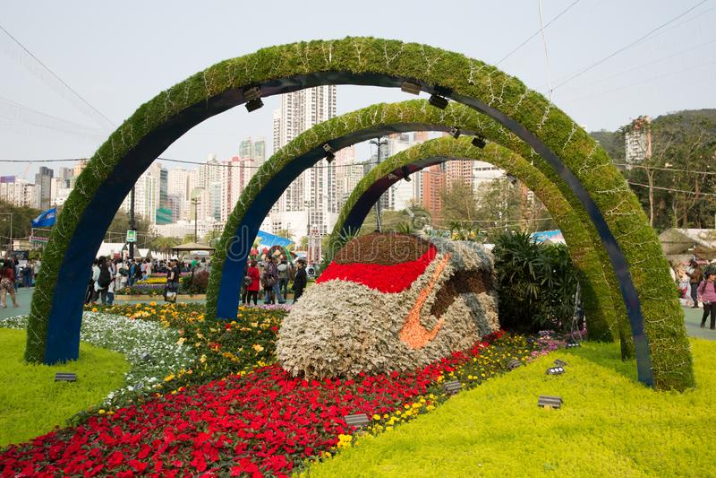 Hong Kong Flower Show 2019 royaltyfria foton