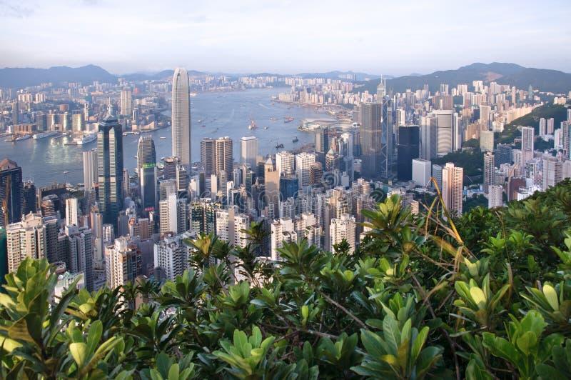 Hong Kong gesehen von Lugard-Straße auf der Spitze lizenzfreie stockbilder