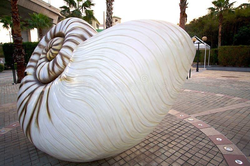 Download Hong Kong Ma Wan Park Spiral Shells Stock Image - Image of crushing, nobody: 8871105