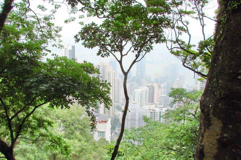 Hong Kong Panorama van megastadënwolkenkrabbers door de overzeese baai worden omringd die royalty-vrije stock afbeeldingen