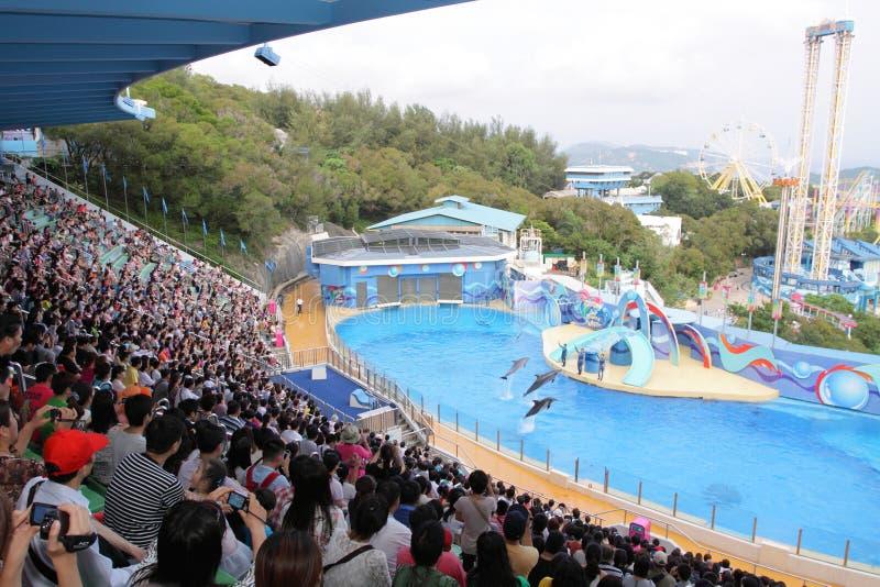 Hong Kong: Parque do oceano imagens de stock