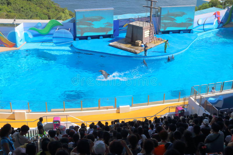 Hong Kong: Parque do oceano imagens de stock royalty free