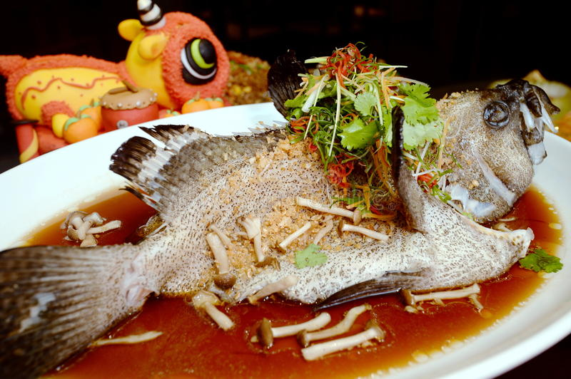 Hong Kong style steamed dragon grouper with mushroom and herbs o royalty free stock photos