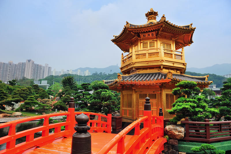 Hong Kong trädgård royaltyfri fotografi