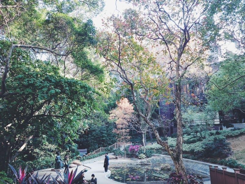 Hong Kong uniwersytet obrazy royalty free