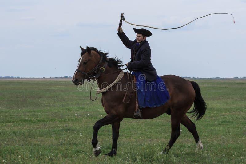 Hongaarse Cowboys stock afbeelding