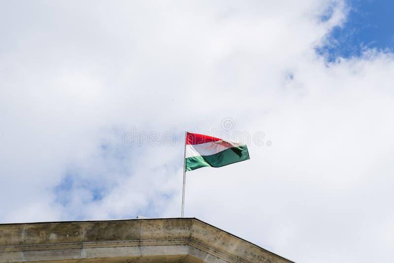 Hongaarse vlag stock foto's