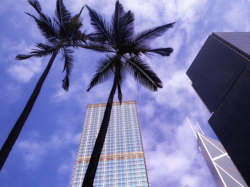 Hongkong tall modern office buildings royalty free stock photo