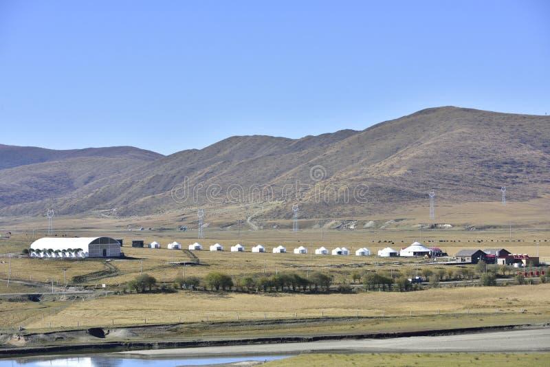 Hongyuan prerii sceneria obrazy stock