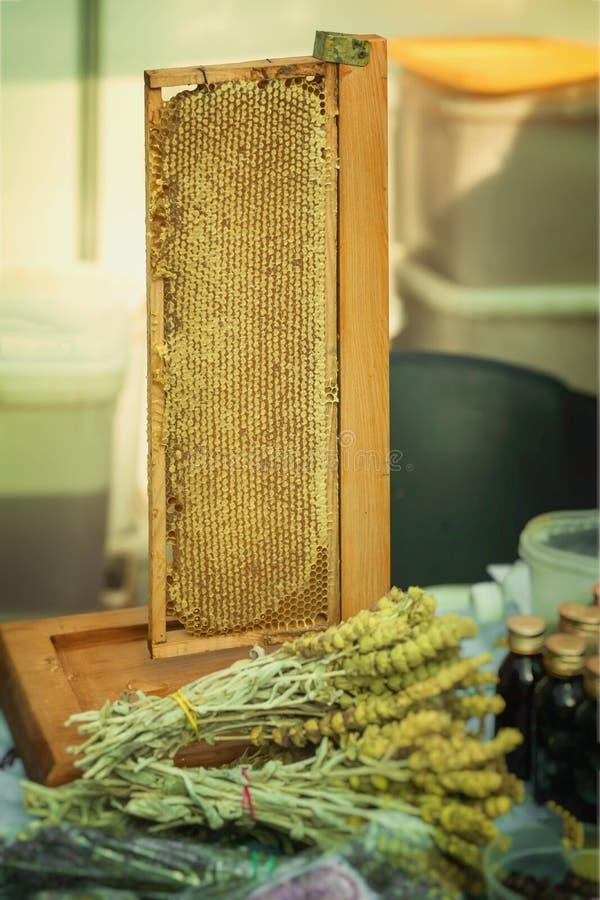 Honig in den Bienenwaben, Produktion des Honigs auf dem Bauernhofmarktzähler für gesunden Krauttee mit antibakteriellem Mittel, p lizenzfreie stockfotos