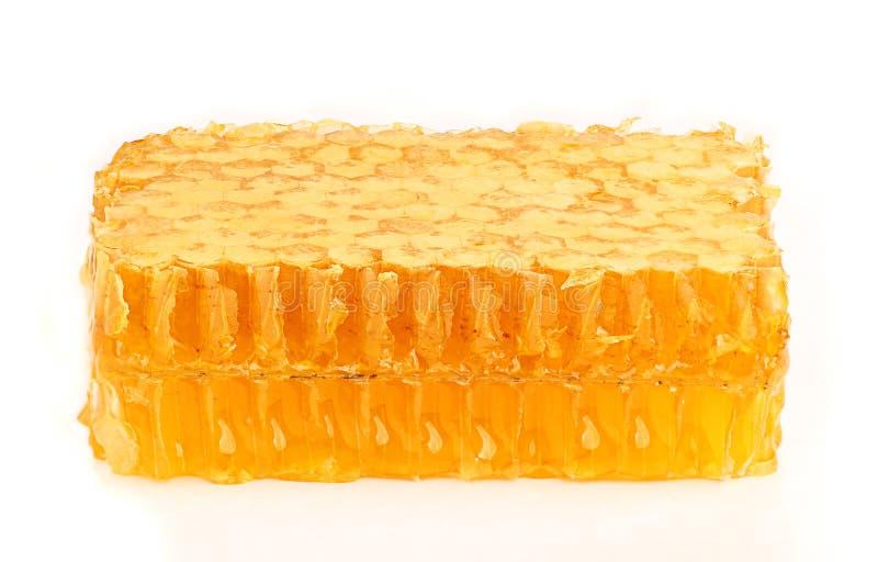 Honig in der Kammnahaufnahme. stockfoto