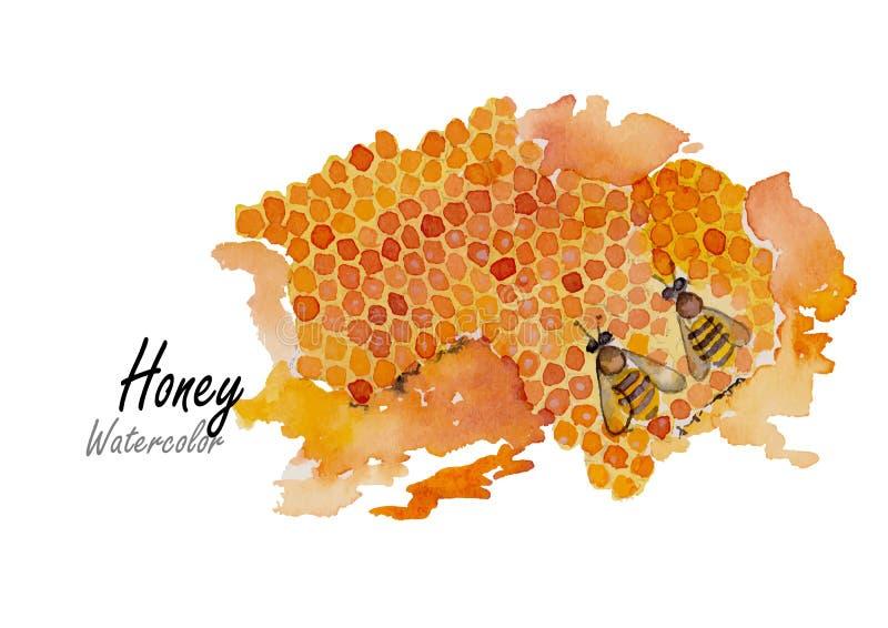 Honig Hand gezeichnete Aquarellmalerei auf weißem Hintergrund Auch im corel abgehobenen Betrag lizenzfreie abbildung