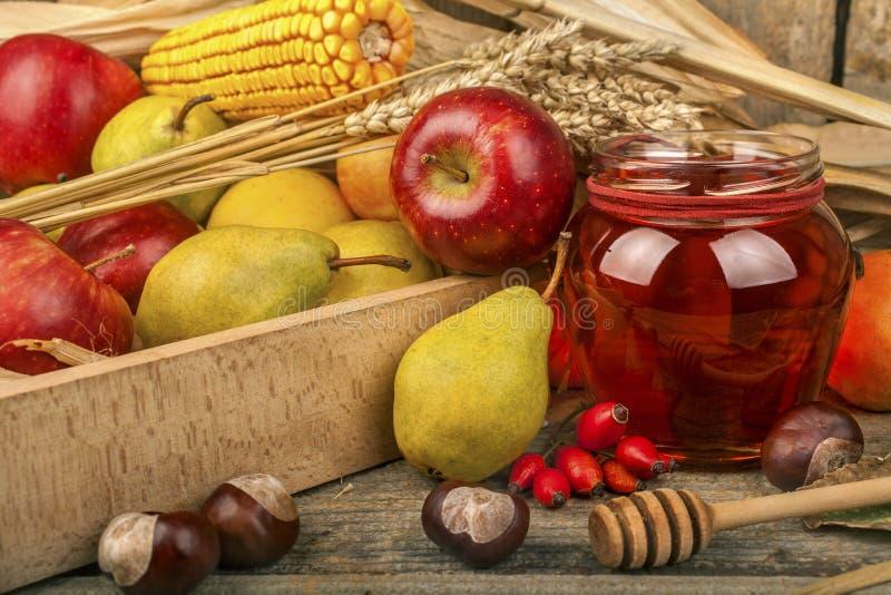 Honig mit Herbstfrüchten lizenzfreie stockbilder