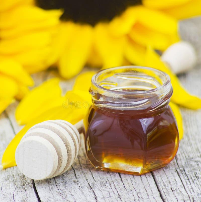 Honig und Sonnenblume lizenzfreies stockfoto