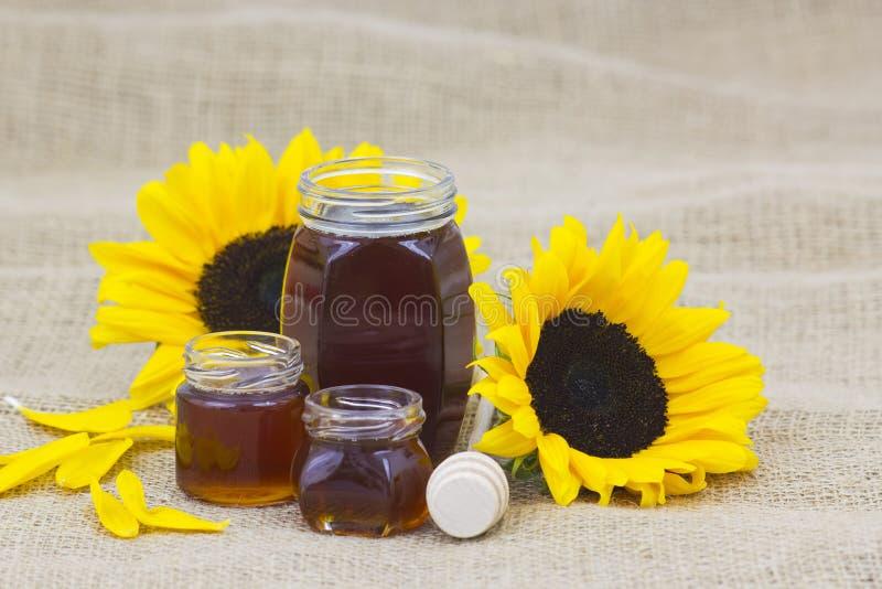 Honig und Sonnenblume stockfotos
