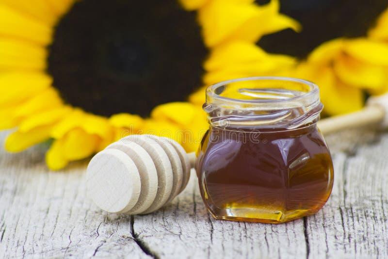 Honig und Sonnenblume stockfotografie