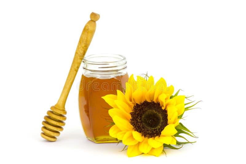 Honig und Sonnenblume lizenzfreie stockfotos