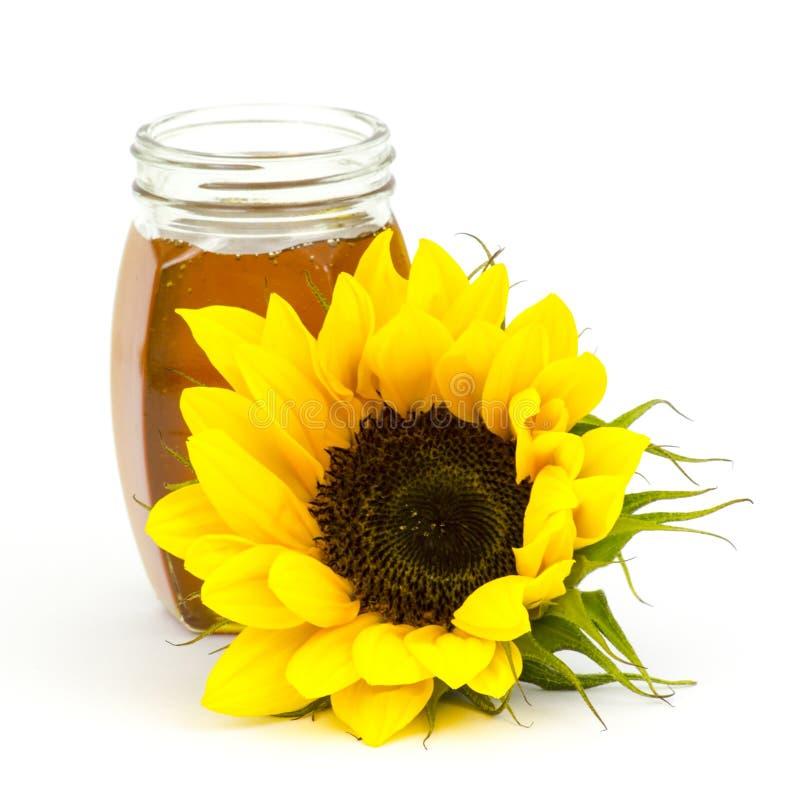 Honig und Sonnenblume stockbilder