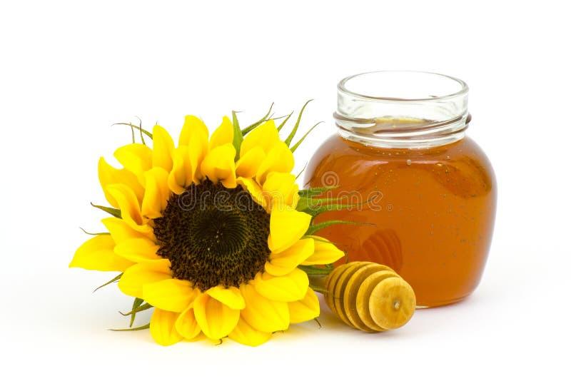 Honig und Sonnenblume lizenzfreie stockfotografie