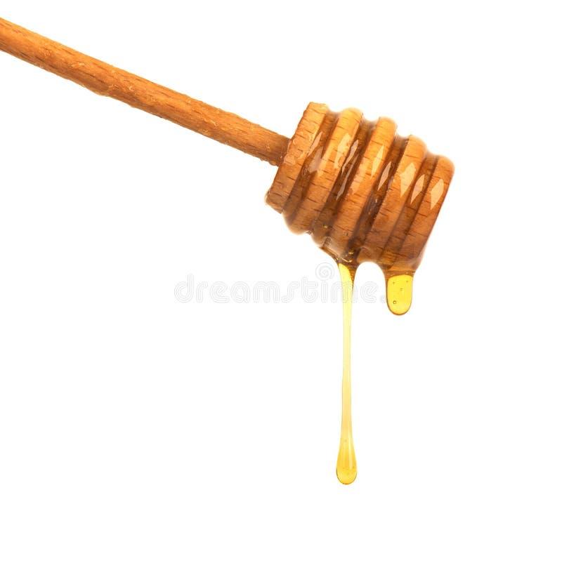 Honigbratenfett lokalisiert auf weißem Hintergrund Honig getrennt stockfotografie