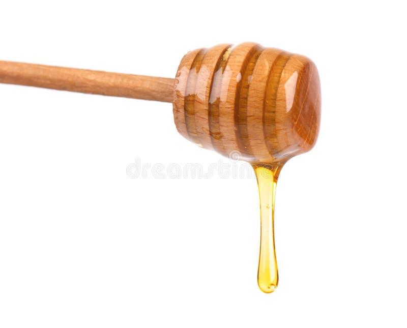 Honigbratenfett lokalisiert auf weißem Hintergrund Honig getrennt lizenzfreies stockbild