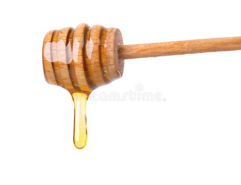 Honigbratenfett lokalisiert auf weißem Hintergrund Honig getrennt stockbild