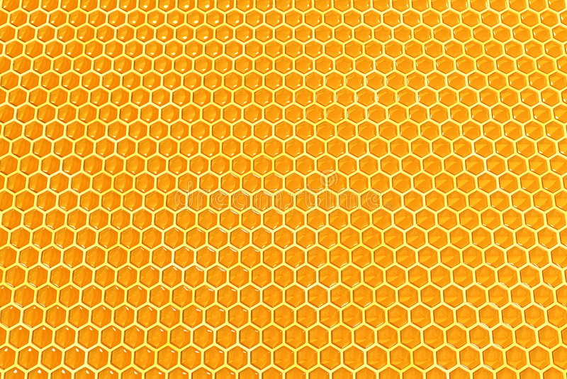 Honigzellen stockfoto