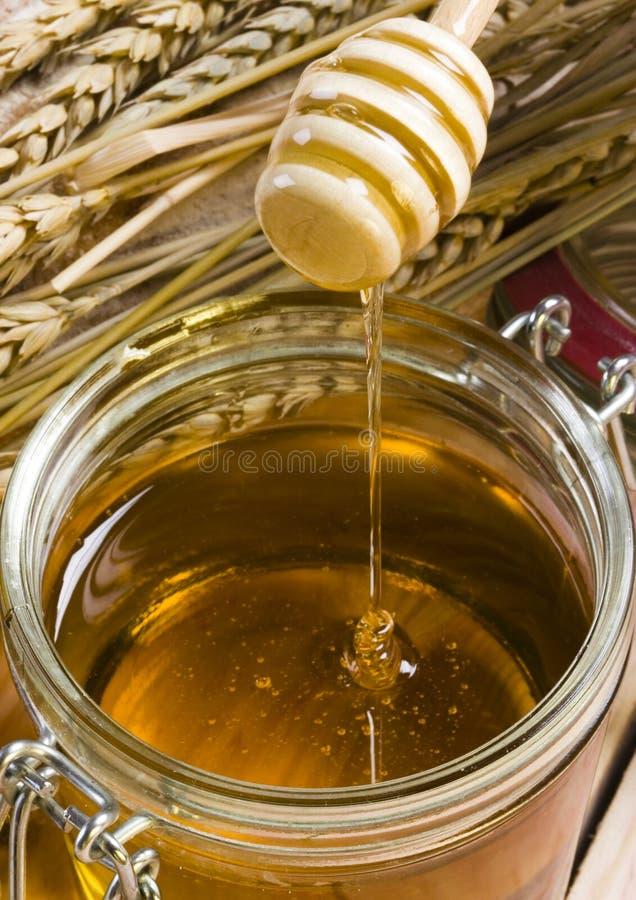 Honing stock afbeelding