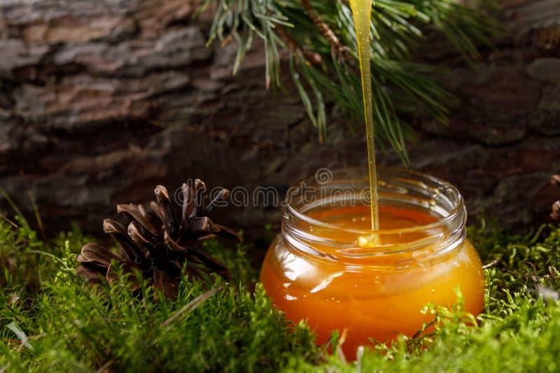 Honing die in een glaskruik stromen op een achtergrond van bosmos en boomschors royalty-vrije stock afbeeldingen