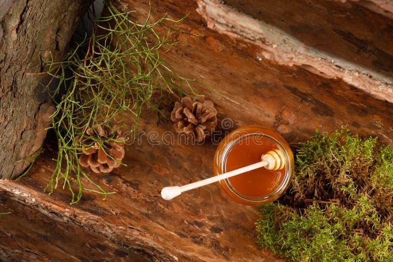 Honing in een glaskruik Taigahoning op boomschors Een kruik honing met denneappels, boomschors en bosmos is mooi royalty-vrije stock fotografie