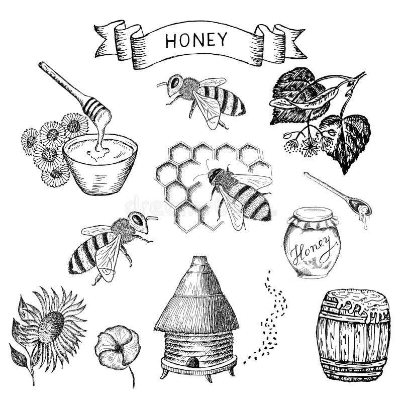 Honing en bij royalty-vrije illustratie