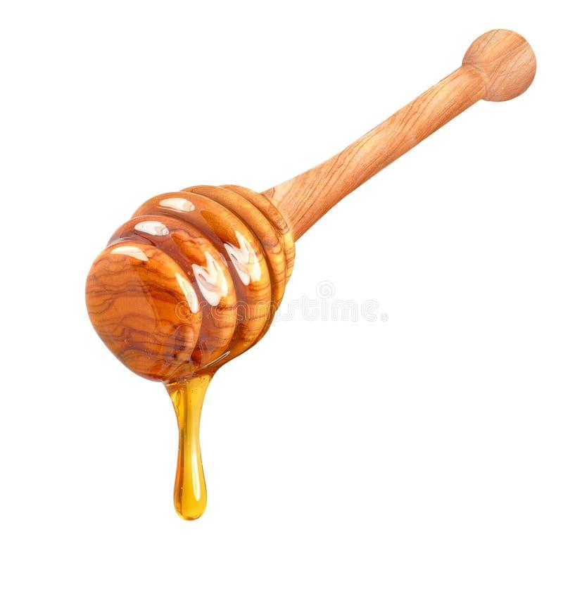 Honing geïsoleerd druipen stock fotografie