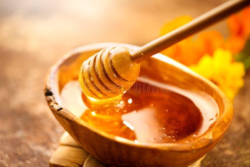Honing Gezonde organische dikke honing die van honingsdipper druipen in houten kom Zoet dessert royalty-vrije stock foto's