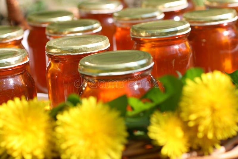 Honing in glas stock foto