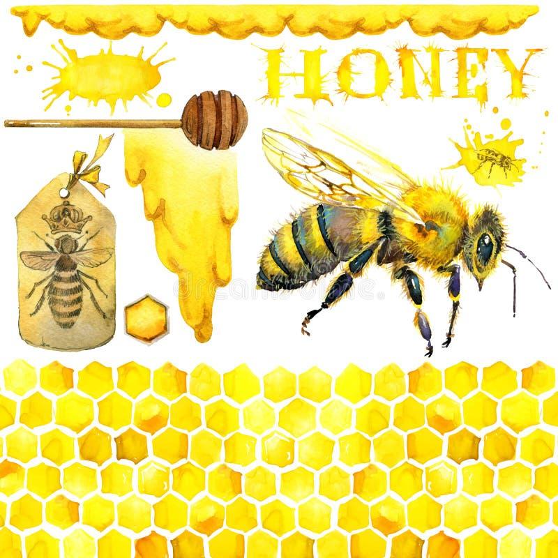 Honing, honingraat, honingbij Reeks voor de producten van het ontwerpetiket van honing De illustratie van de waterverf vector illustratie