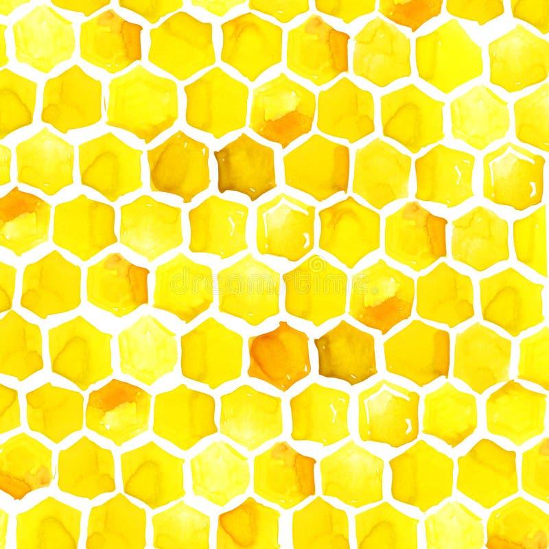 Honing, honingraat, Waterverf vector illustratie